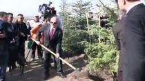 İSKENDER PALA - Eskişehir'de '11 Milyon Ağaç; Bugün Fidan, Yarın Nefes' Programı