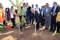 AHMET DEMİR - KOSKİ'den 'Geleceğe Nefes' İçin 42 Bin Fidan