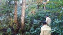 KANDILLI - Ormanlık Alanda Çıkan Yangın Kontrol Altına Alındı