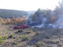 SARMAŞıK - Ormanlık Alanda Yangın