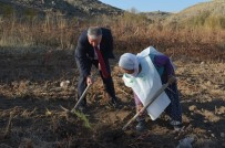 UZUN ÖMÜR - Asırlık Nine 'Geleceğe Nefes Ol' Kampanyasına Fidan Dikerek Destek Verdi
