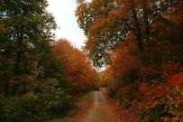DUMANLı  - Amanos Dağlarında Sonbahar Manzaraları