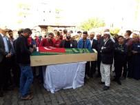 AHMET AKAY - Akçakale'ye Atılan Roketle Şehit Olan Vatandaş Gözyaşlarıyla Defnedildi