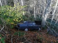 Ormanlık Alana Uçan Otomobil Ağaçlara Takıldı Açıklaması 3 Yaralı