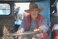 Yerli 'Robinson Crusoe' Ziya Dede, Adasında Kışa Hazırlanıyor
