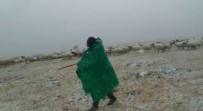 Ağrı'da Çobanlar Sürüleriyle Tipiye Yakalandı