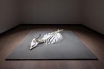 ATALAN - 16. İstanbul Bienali'nde Gelibolulu Sanatçı