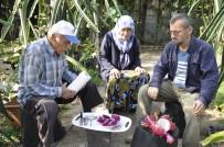 SEBZE ÜRETİMİ - Bahçede Kilosu, Tezgahta Tanesi 30 Lira