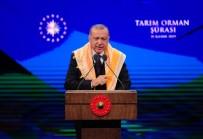 TARIM ÜRÜNÜ - Cumhurbaşkanı Erdoğan'dan Çiftçilere Müjde Üstüne Müjde