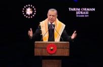 TARIM ÜRÜNÜ - Cumhurbaşkanı Erdoğan'dan Çiftçilere Müjde