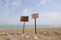 CARETTA CARETTA - Mezitli Belediyesi, Kaplumbağalar İçin Hukuk Mücadelesi Başlattı