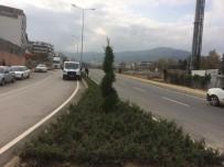 BAHRİYE ÜÇOK - Büyükşehir Bahriye Üçok Caddesi'ni Yeşillendirdi