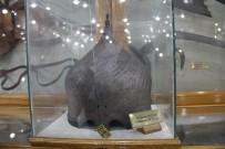 SİLAH FABRİKASI - Silahın tarihi bu müzede