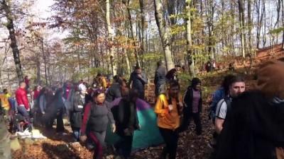 Dumanlı Yaylası, Sonbahar Renkleriyle Büyülüyor