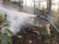 SARMAŞıK - Bayırköy'de Ormanlık Alanda Yangın