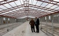 FARUK GÜNAY - Erzincan'da 500 Başlık Düve Üretim Merkezi İnşaatı Hızla Devam Ediyor