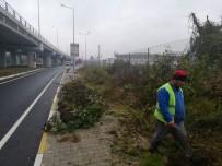 BEYKÖY - Yeni Çevre Yolu Refüjlerinde Temizlik Yapıldı