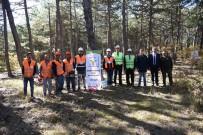 Ormancılık İş Koluna Mesleki Yeterlilik Belgesi Şartı Getirildi