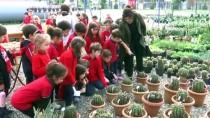 29 EKİM CUMHURİYET BAYRAMI - İlkokul Öğrencilerinden Kaktüslerden Türk Bayrağı