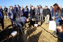 Kastamonu'da 11 Kasım'da 200 Bin Fidan Toprakla Buluşacak