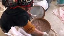 BARBUNYA - 'Ovacık Kurusu' Kadın Eliyle Ekonomiye Kazandırılıyor