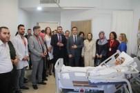 AHMET KARAKAYA - Kestel Devlet Hastanesi'nin İlk Bebeği Dünyaya Geldi