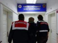 SES BOMBASI - DEAŞ'lı Kadın Bursa'da Gözaltına Alındı