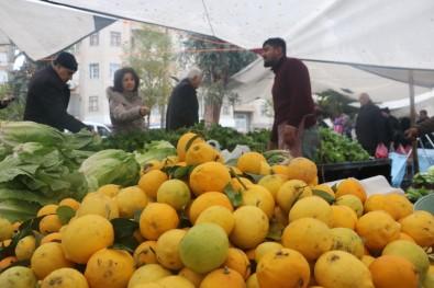 Soğuk Havada Limona Olan Talep İkiye Katlandı