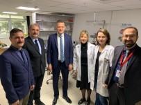 MEHMET ŞAHIN - Kaymakamdan Safranbolu Devlet Hastanesi'ne Ziyaret