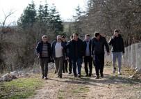 MURAT ÖZTÜRK - Metristepe'den Söğüt'e Doğa Yürüyüşü Düzenlendi