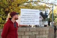PİTBULL - Pitbull Cinsi Köpeğini Şikayet Edenlere Böyle Tepki Gösterdi