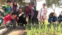 BARBUNYA - Minik Öğrenciler Şehrin Göbeğinde Doğayla İç İçe Geleceğe Hazırlanıyor
