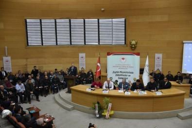 Akhisar'da 'Zeytin Hastalıkları Ve Zararlıları' Konuşuldu
