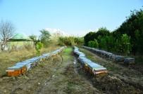 MEHMET CAN - Adana'da Selden Zarar Gören Arıcılara Destek