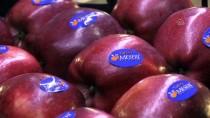 MEHMET BAYRAM - Depodan 2 Liraya Alınan Elma Markette 7 Liraya Satılıyor