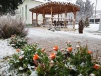 BAĞBAŞı - Denizli'de Kar Yağışı Etkisini Arttırdı