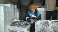 BÜLENT KORKMAZ - Ankara'daki Balıkçılara Gece Denetimi