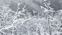 ASLANCAMI - Kar Yağışına Hazırlıksız Yakalandılar