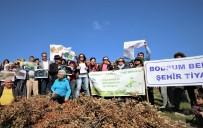 MUSTAFA SARUHAN - Bodrum'da Ormanıma Dokunma Eylemi