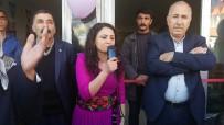 HDP -