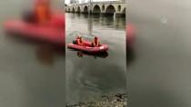 MERİÇ KÖPRÜSÜ - AFAD Sokak Köpeğini Meriç'te Boğulmaktan Kurtardı
