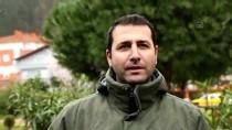 Kastamonu'da Konaklayan Turnalar Doğa Tutkunlarını Sevindirdi