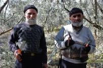 Ekmeğini Ağaçlardan Çıkaran 75'Lik Dede Gençlere Taş Çıkarıyor