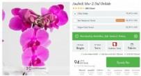 En İyi Online Çiçek Siteleri (Aynı Gün Teslim)