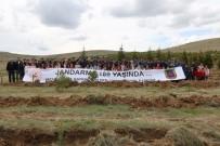Jandarma Mucur İlçesinde 2 Bin 500 Fidan Dikti