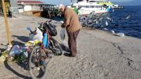 MEHMET SEZGIN - Bu İlçede Yaşayan Sokak Hayvanları Ve Kuşlar Onun Yolunu Gözlüyor