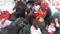 Gömeç'te 21 Göçmen Yakalandı