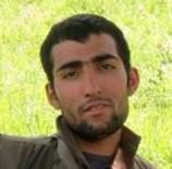 GABAR DAĞI - PKK'nın takım sorumlusu etkisiz hale getirildi