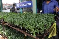 MUSTAFA POLAT - (Özel) Yüksek Fiyatlar Vatandaşı Sebze Üretimine Yöneltiyor