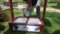 ORHAN VELİ KANIK - Beykoz'da Sokak Hayvanları Yeni Evlerine Kavuştu